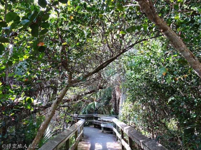 大沼澤地國家公園 11