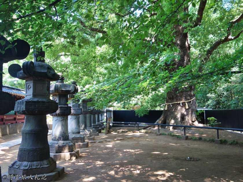 上野公園 4