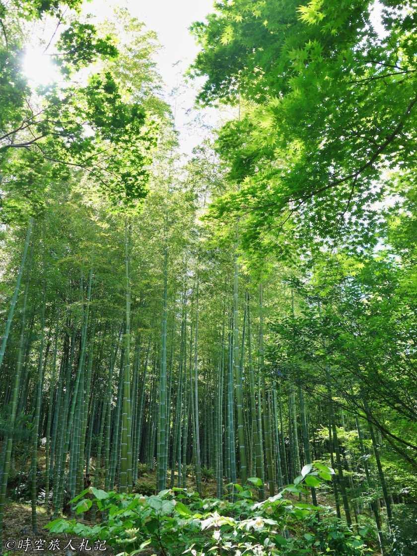 嵐山 15
