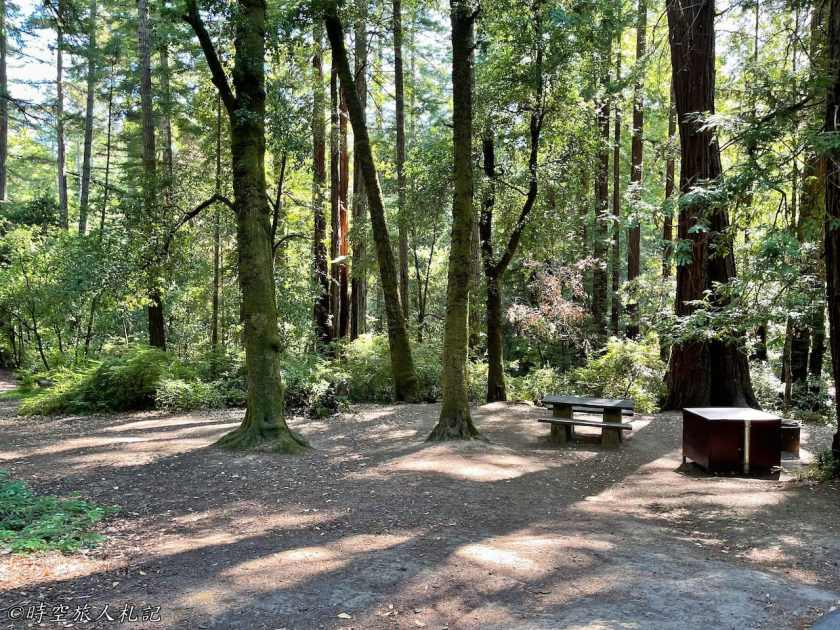 Portola redwood state park 3