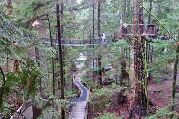 Capilano suspension bridge 1