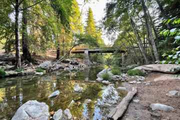 Pfeiffer Big Sur State Park 7
