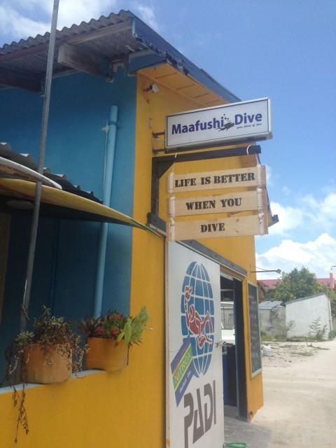 Setelah cek sana dan sini, Maafushi Dive paling OK harga dan jasanya :)