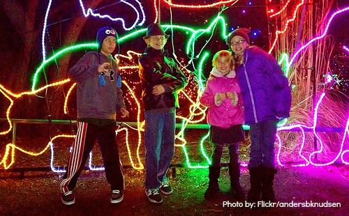 Zoo Lights Salt Lake City