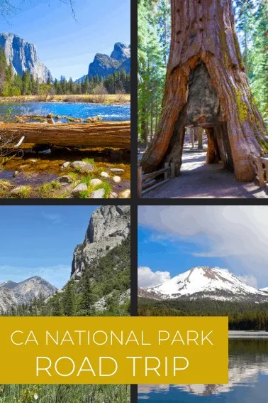 In case you're missing the forest for the trees, here are a few reminders why woodlands are wonderful. National Parks Near Me 60 Great National Parks To Explore