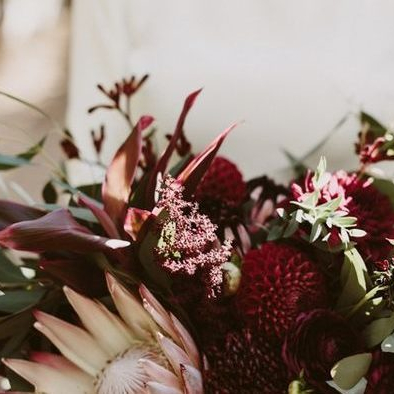 Discover New Blooms to market