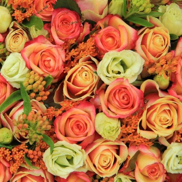September Blooms to Market!