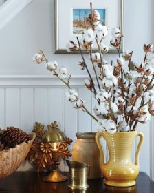 Top 5 Fresh and Dried Products to Style your Home or Office