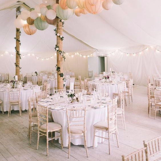 Wedding Planning Ideas - Triangle Nursery Ltd