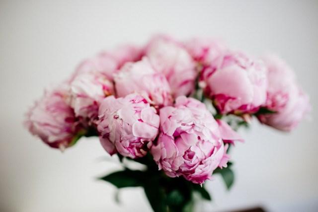 Bouquet of pink peonies
