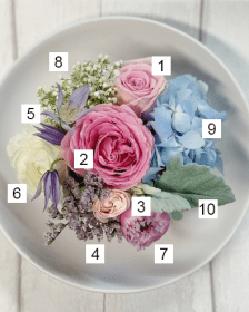 How to Demos and Flower Guides with Triangle Nursery