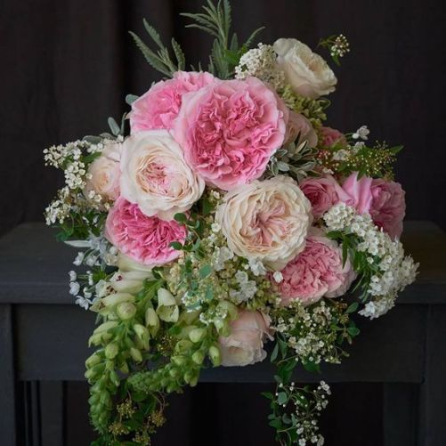 Flowers Guides with Garden Roses with Triangle Nursery