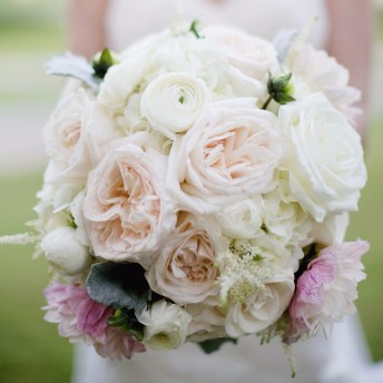 Celebrate Garden Roses with Triangle Nursery this June