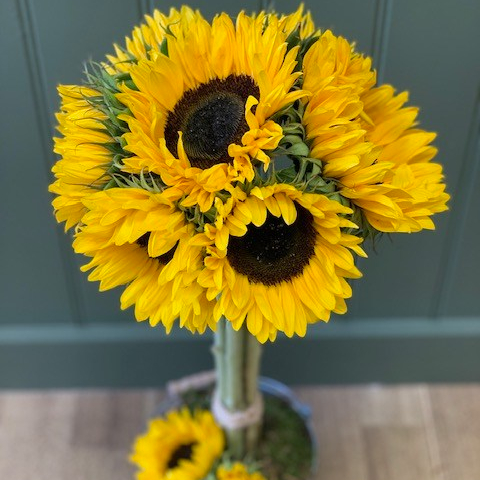 DIY Sunflower Topiary Tree
