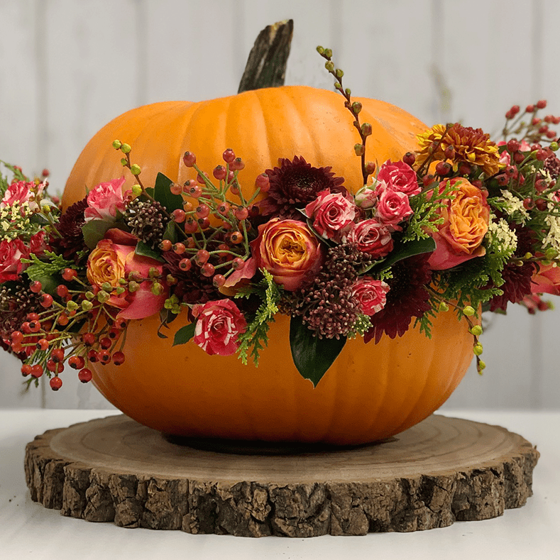 Learn how to make a pumpkin arrangement for your home with fresh flowers this Halloween