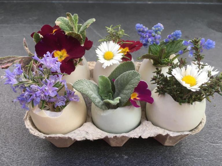 Garden Challenge: Easter Eggs