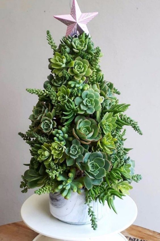 Festive Trend for 2020: Succulent Christmas Tree