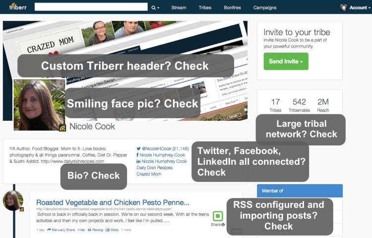 triberr profile check