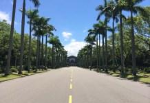 公館商圈/ 台大椰林大道