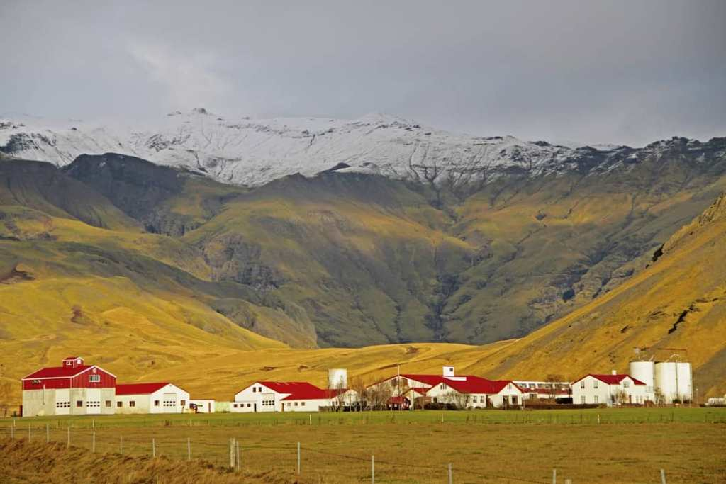 Ladang-ladang di Iceland