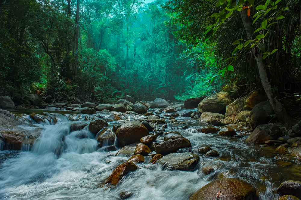 Sungai Chiling, Selangor is located at forest reserved, one of the beautiful waterfalls in Malaysia