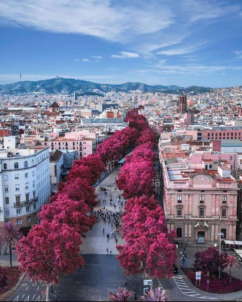 Tempat Menarik di Barcelona