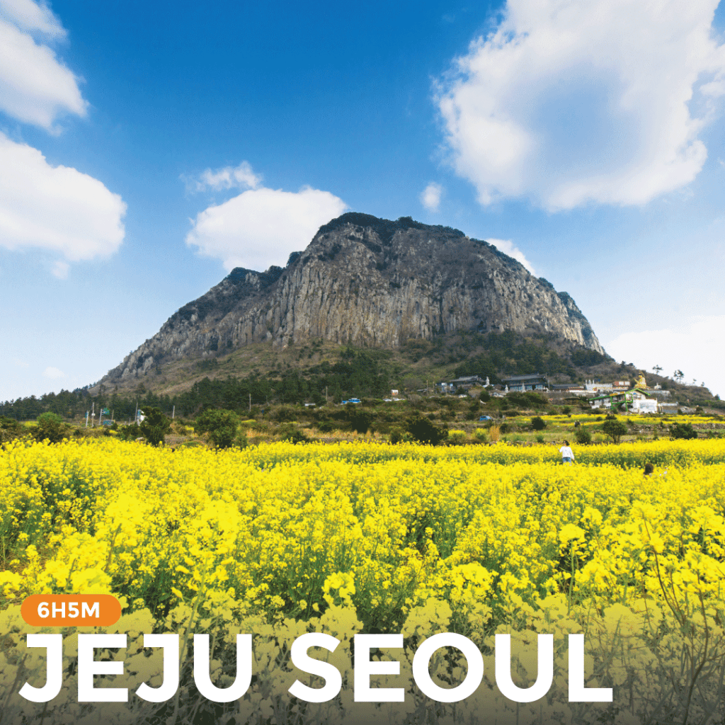 Pakej ALL-IN Jeju Seoul