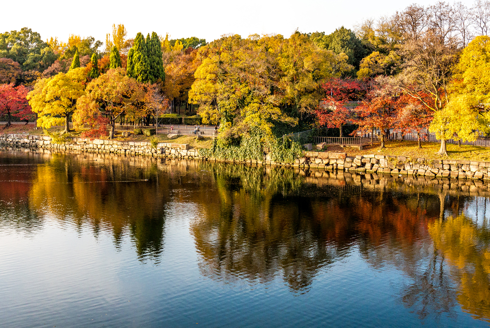 When Is the Best Time to Go to Osaka, Autumn
