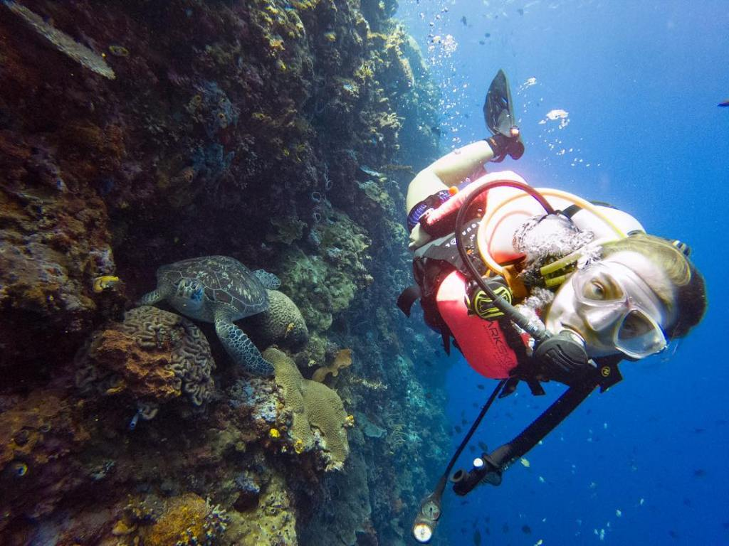 Many islands in Indonesia are great for diving and snorkeling