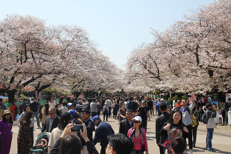 Things You Need to Know Before You Travel to Tokyo, Ueno Park