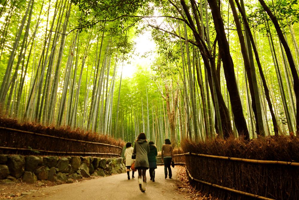 Arashiyama Bamboo Grove is one of Kyoto's top sights.