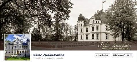 Pałac Ziemiełowice