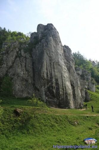 Brama Bolechowicka