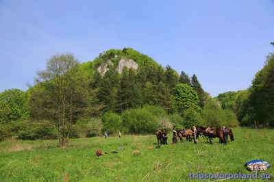Dolina Będkowska i Dolina Kobylańska