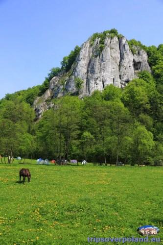 Dolina Będkowska