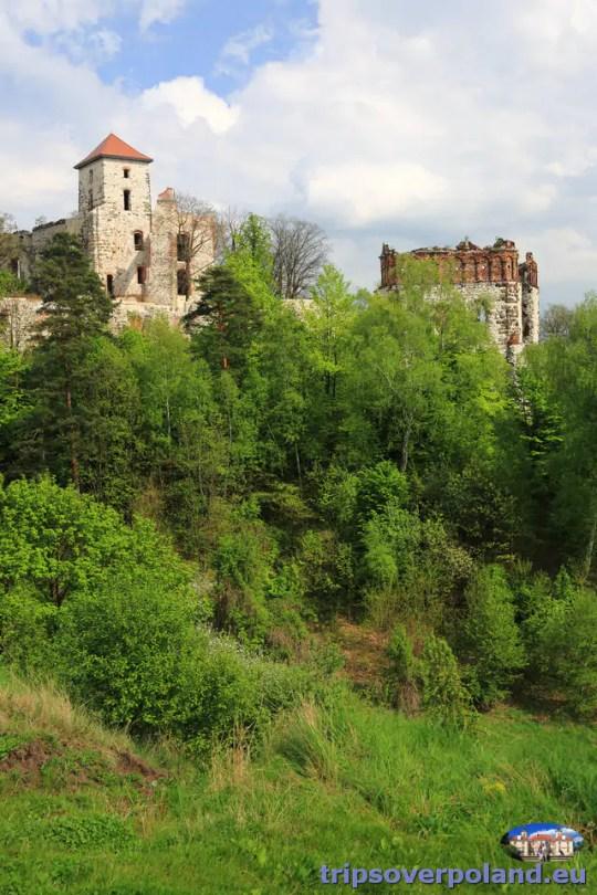 Zamek Tenczyn w Rudnie'2014