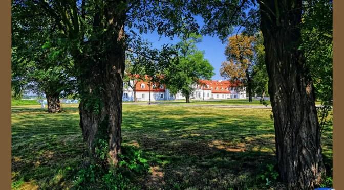 Od zrujnowanego dworku do błyszczącego pałacu – Konary