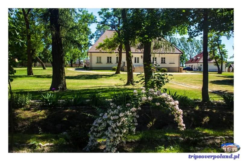 Dąbrowa'2017