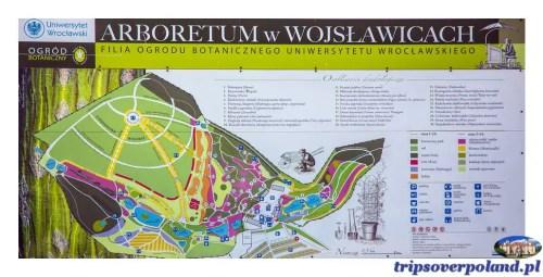 Wojsławice'2019 - plan