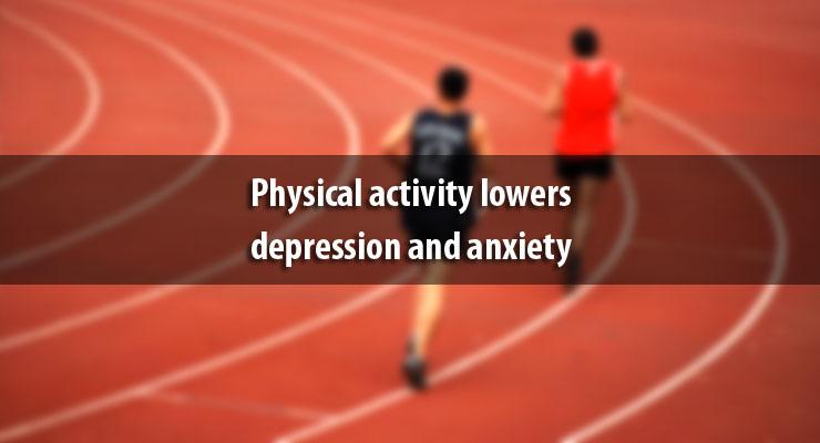 depression anxiety stress scale dass pdf