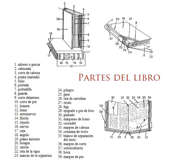 https://i1.wp.com/blog.tsedi.com/wp-content/uploads/2017/03/partes-del-libro-tsedi.png