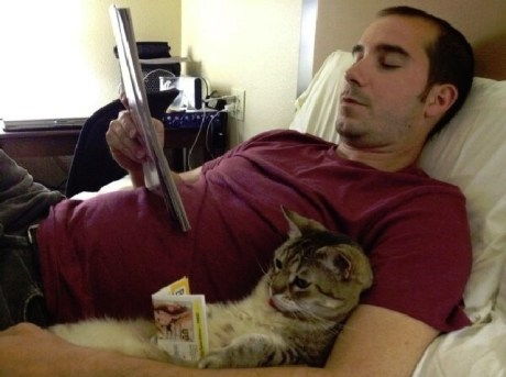 81301-cat-doing-some-light-reading-m-wkIH