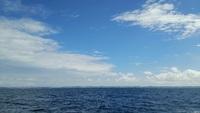 沖釣り乗り合いウメイロからの太刀魚@むるぶし