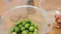 オオシッタイで梅狩りをした梅で梅シロップを仕込みました