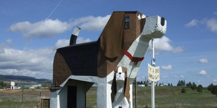 dog_bark_park_inn_hotel2-1