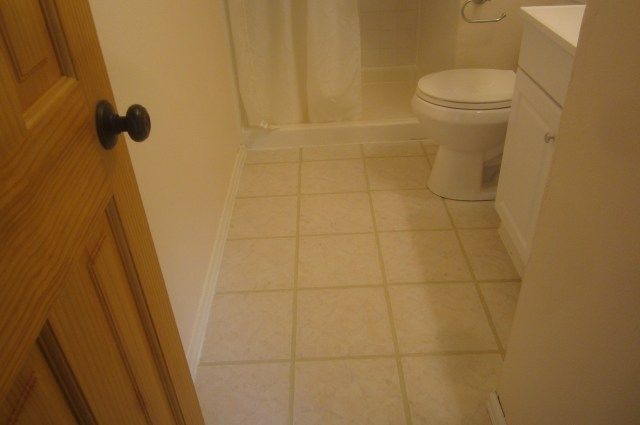 Master bath redo with grout paint