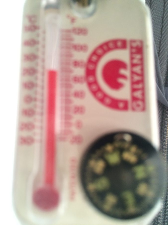 Tent Thermometer