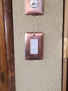 Caseta Wall Switch