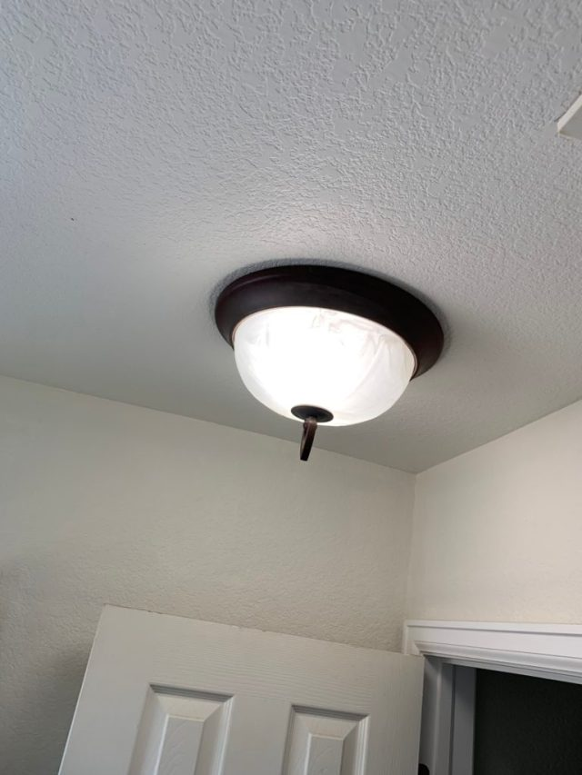 Dark bronze trim ceiling light salvaged from our house