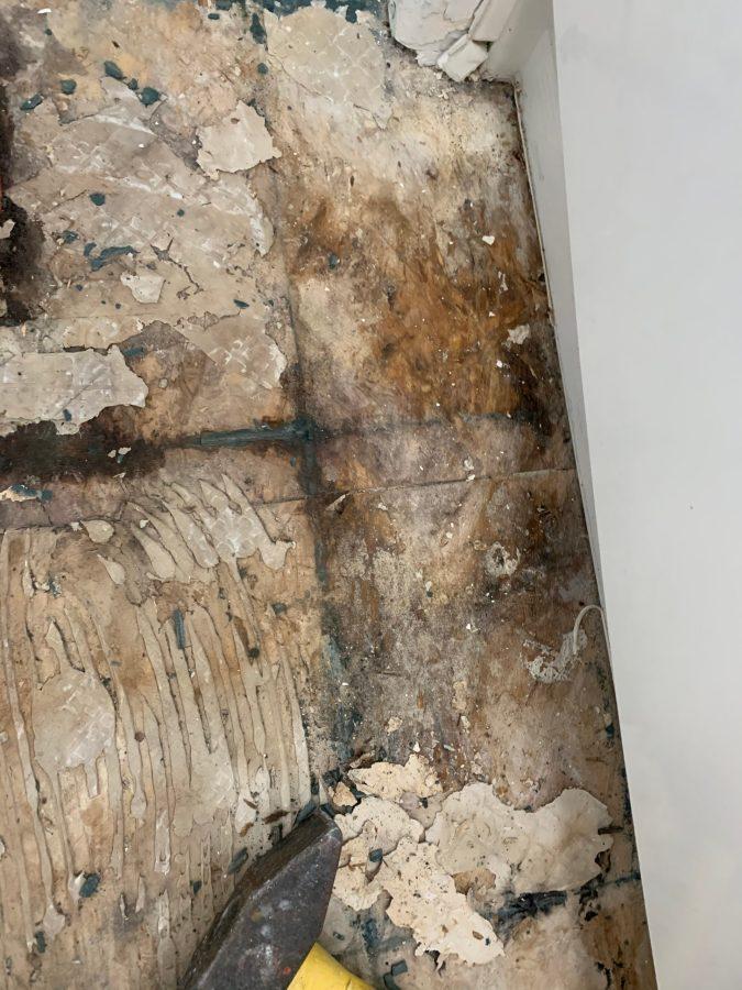 Mold near tub